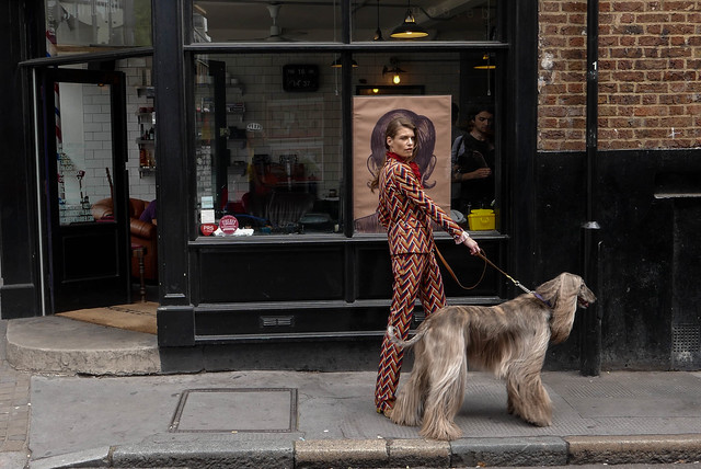 dog and lady L1250629