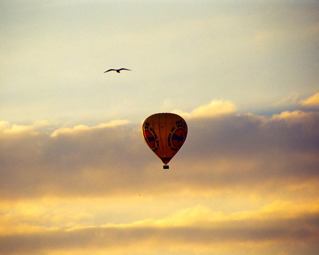 airborne by Jannik Hildebrand