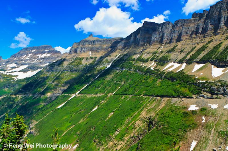 0526c7cde36c ... Summer landscape