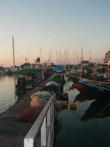 Jaffa's port 2