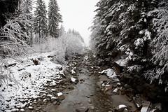 Trip to France Day #7 - Chamonix - 10, Dec - 04.jpg by sebastien.barre