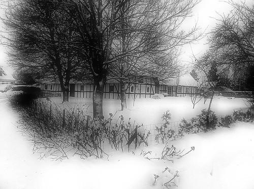 27 Dicembre 2010, Odense