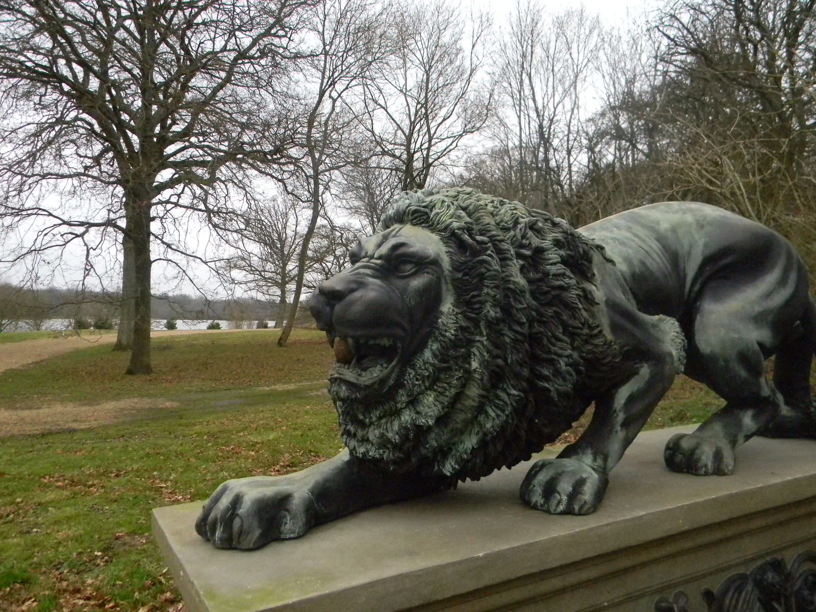 Snarling lion, nr Dogmersfield Park Winchfield Circular