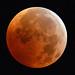 Total Lunar Eclipse December 21, 2010 by Brian E Kushner