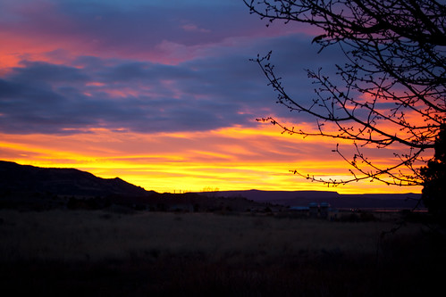 pink blue red newmexico tree yellow clouds sunrise landscape mesa