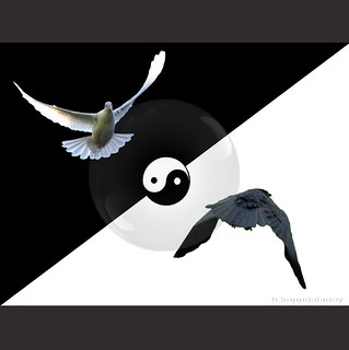 Yin and Yang | by h.koppdelaney