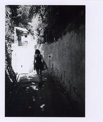 pellicola003