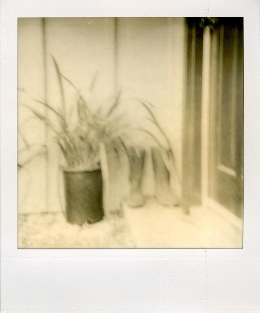 by the front door