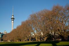 Victoria Park / Sky Tower