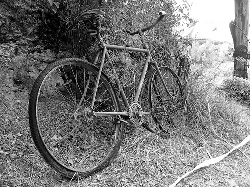 Old Bike in the Road