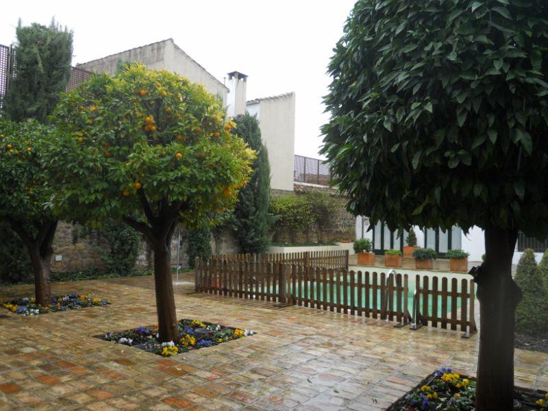 Vistas patio Palacio Dávila