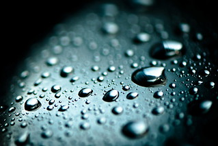 water drops (16/365) | by Tim Geers