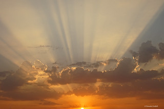 Sunrise in Aswan, Egypt | by Renate Dodell