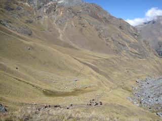 The hike down from 15,000 feet - Mt. Salkantay, Peru