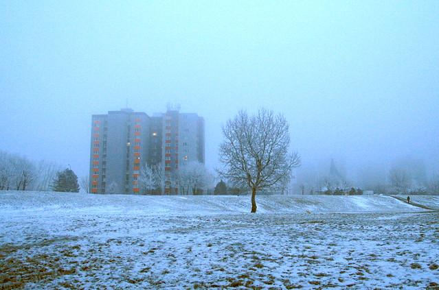 Winter Twilight in City