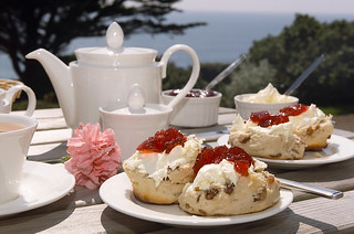 Cream Tea | by Shane Global Language Centres