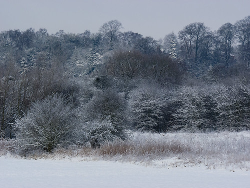 Barley Field and Tettenhall ridge under snow