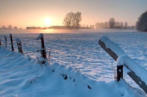 Winter Sun | by Nietnagel