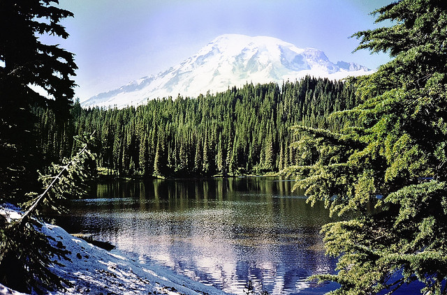 Reflections of Mount Rainier