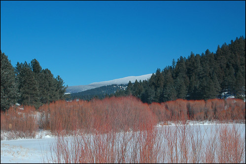 new winter snow storm newmexico day years nm angelfire eaglenest