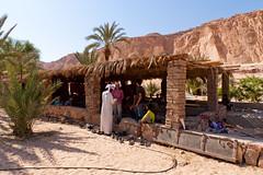 Mittagspause in der Oase Ain Khudra