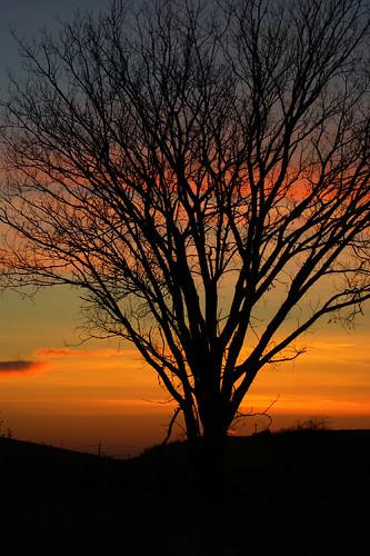 sunset oklahoma colors beautiful silhouette