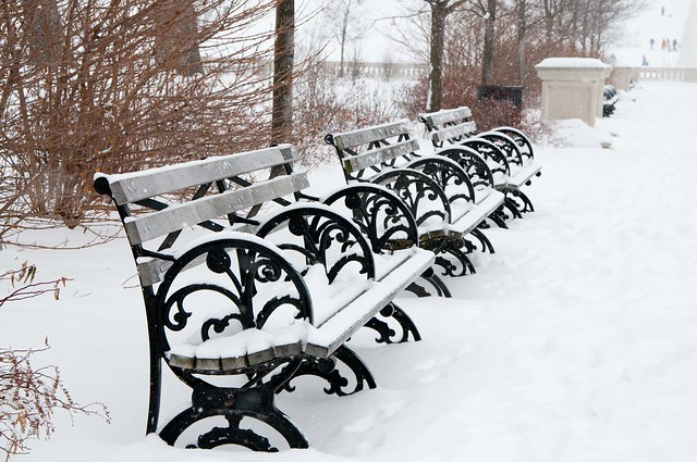 Benches on Forest Park's Grand Basin