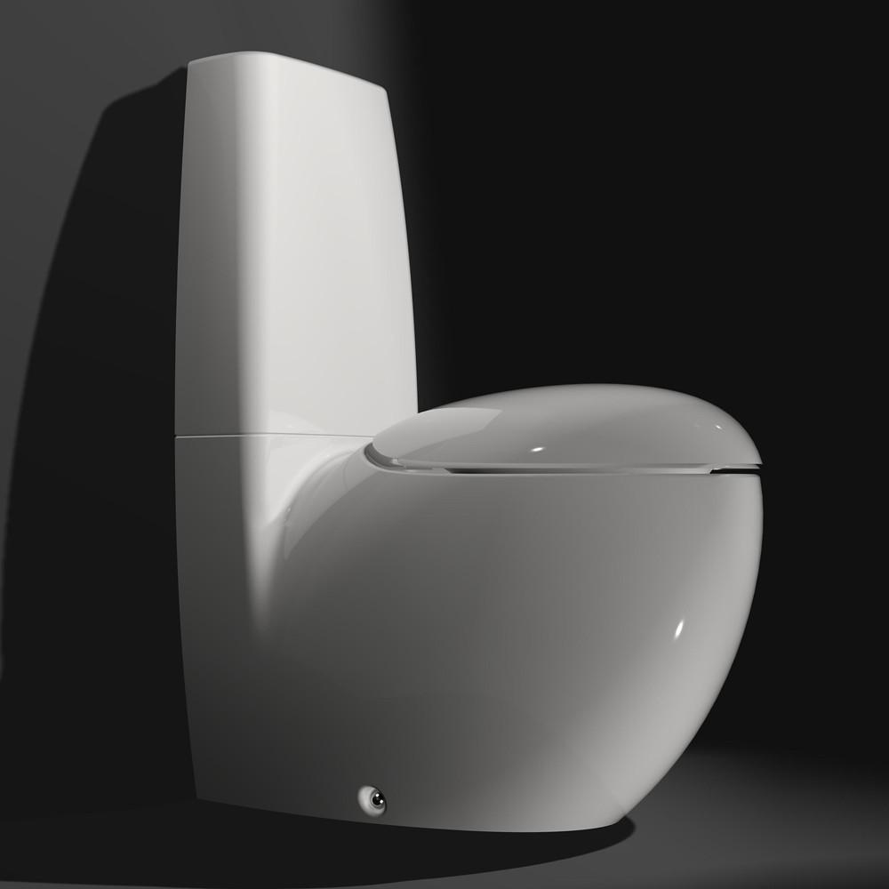Laufen Ii Bagno Alessi One Toilet The Laufen Il Bagno