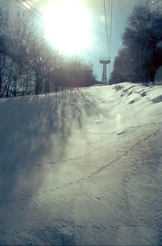 雪 by Noël Café