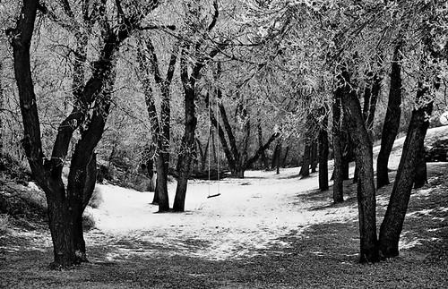 winter snow cold december northdakota lonely