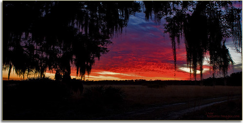 landscapes parks sunsets blending stateparks multiimage 2470mm oldflorida floridaimages floridastateparks