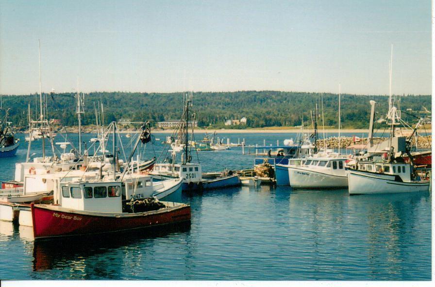 Cape Islander fishing boats, Grand Manan, New Brunswick, C
