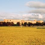 200409校舎風景