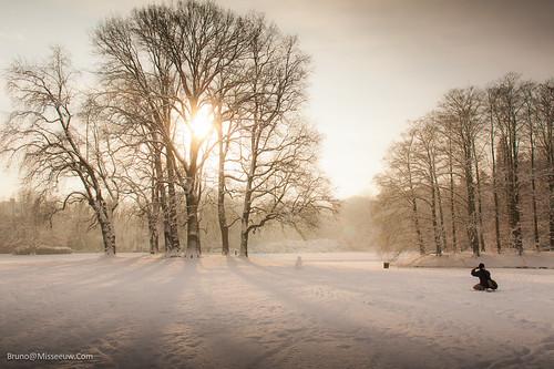 park morning winter sky sun snow man forest sunrise landscape person woods belgium snowy belgië filter lonely 1020mm bruno sunray flanders cokin vlaanderen 450d 121s misseeuw brunomisseeuw