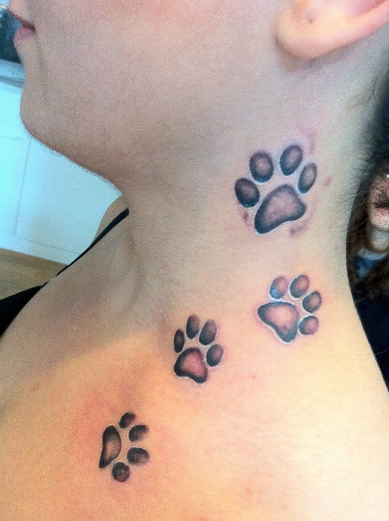 Paw Print Tattoo David Benjamin Kaye Flickr
