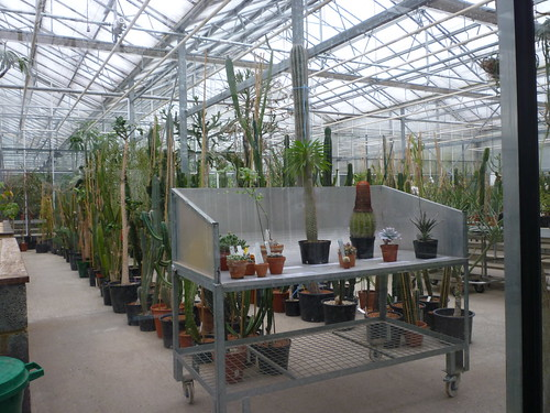 Behind-the-scenes in Kew's Tropical Nursery | by Kew on Flickr