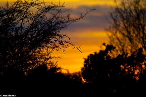 sunset sky dusk