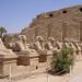 Karnak – alej sfing, foto: Luděk Wellner