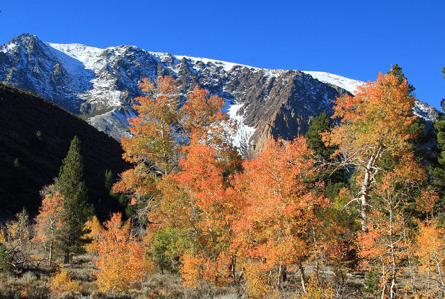 Fall colors at the start of the Parker Lake trail head