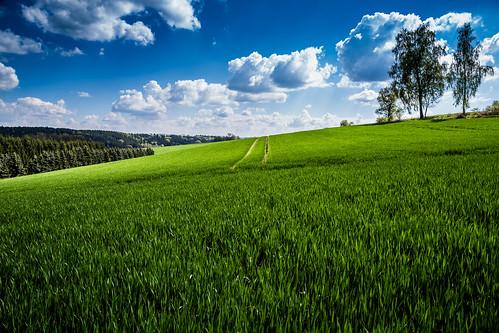 trees sky nature field clouds easter landscape countryside day view cloudy natur feld wiese grün blau landschaft wald ausblick chemnitz partlycloudy erzgebirge 24105 osterspaziergang oremountains eos6d adelsbergturm sternmühlental
