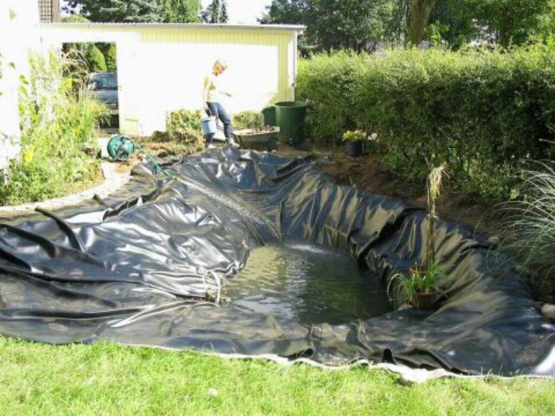 Jardineros en acci n c mo instalar un estanque en el jard n for Como mantener un estanque limpio