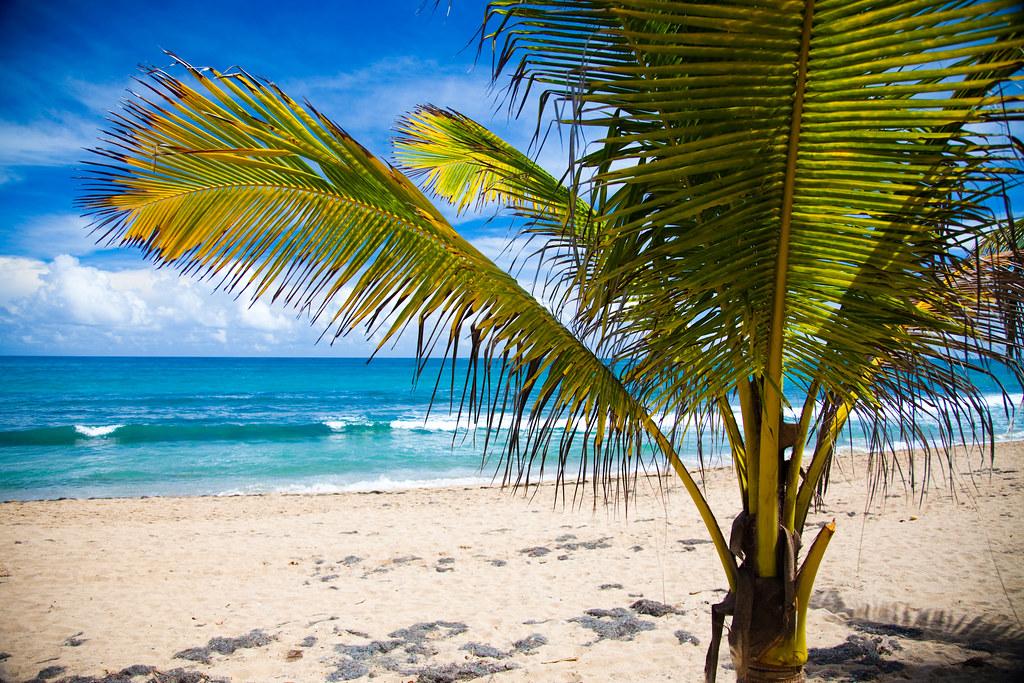 hastighet dating San Juan Puerto Rico dating i Junior College
