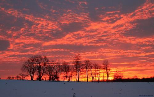 trees winter sun ontario rural farm sunrises february fergus friday sideroad ennotville