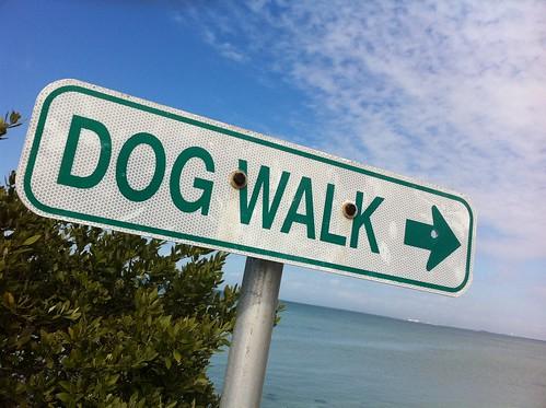 2011/365/53 Walk This Way   by cogdogblog