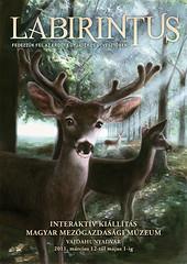 2011. február 13. 10:38 - Labirintus - Fedezzük fel az erdő titkait egy játékos útvesztőben!