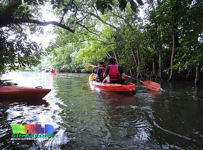 Kayaking to Khatib Bongsu