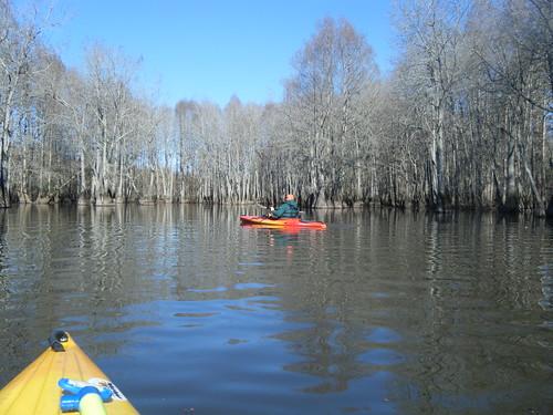 sc unitedstates rimini kayaking paddling pinewood lowcountryunfiltered sparkleberryswamp