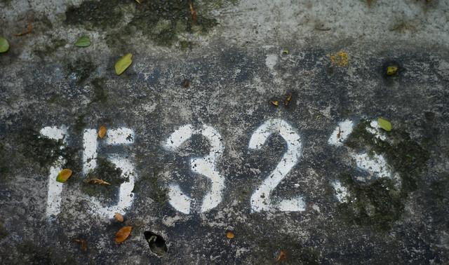 15323