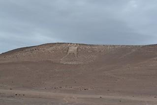Gigante de Tarapacá | by vivaiquique