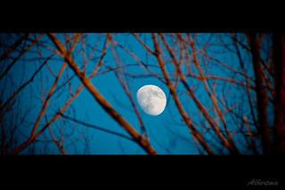 Luna | Moon | Mond | by albertma.